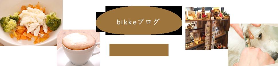 bikkeブログ